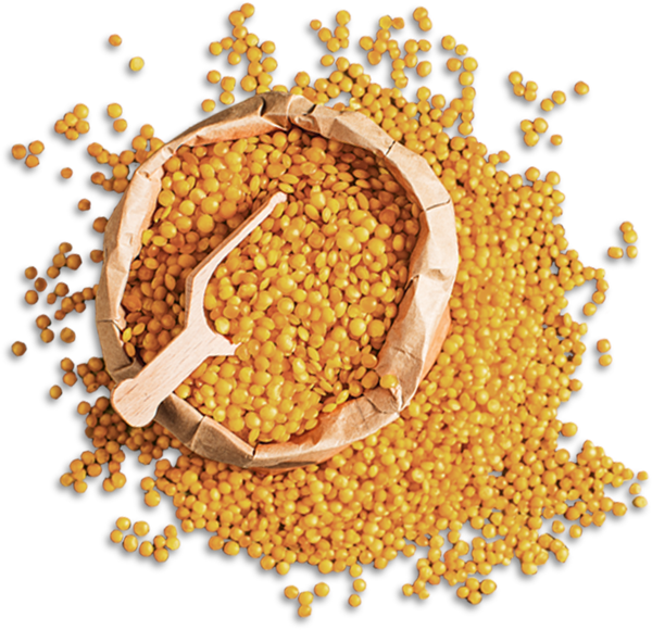 Products heros lentils